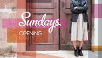 opening sundays 20 nov 2016